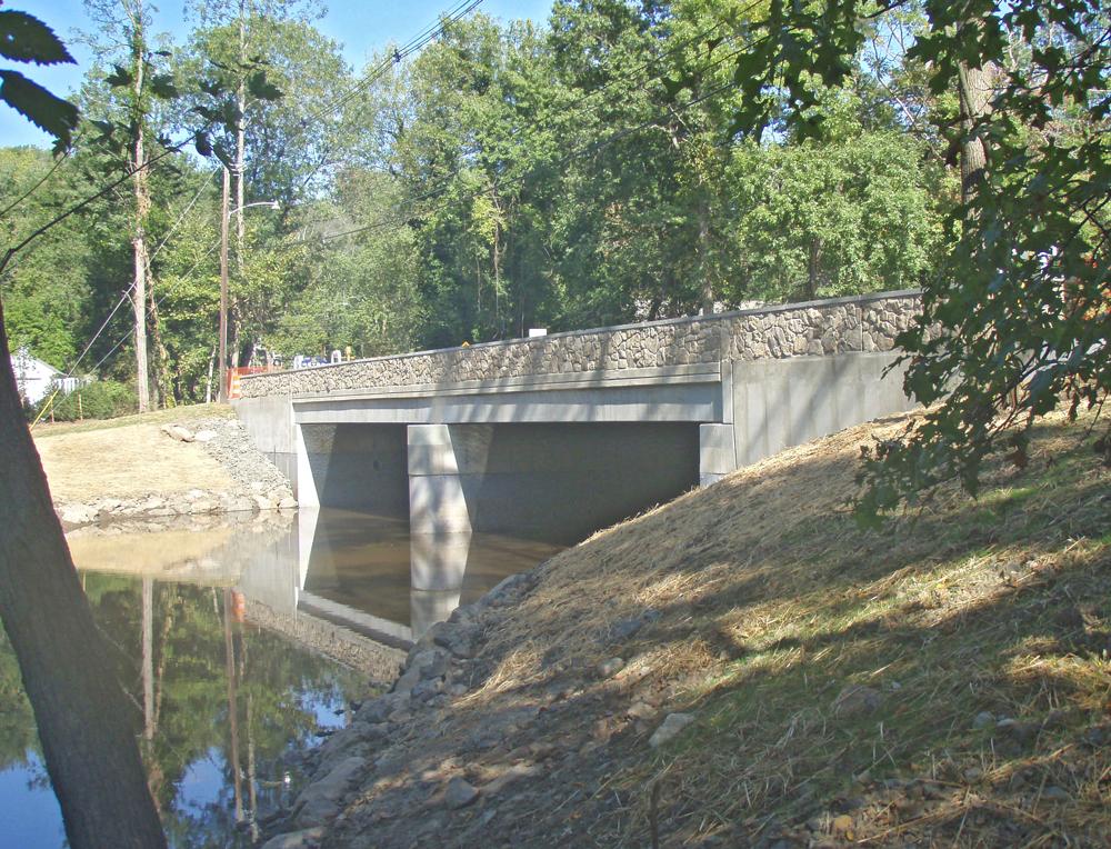 bridge-rehab-design