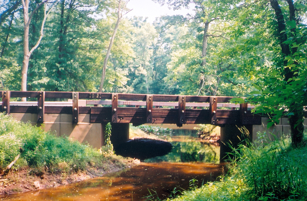 timber-bridge-inspection